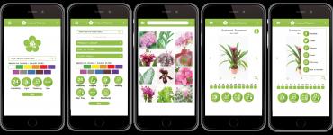 InfoFlowersPlants app
