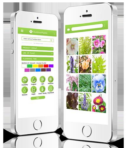 InfoFlowersPlants Apps